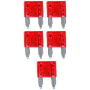 Fusible Audiopipe Mini 10 AMP. 5 Piezas