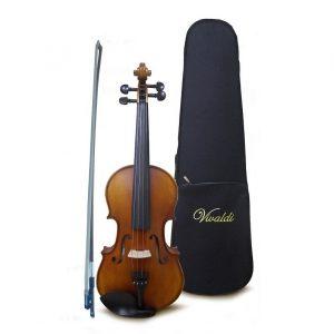 Violín Vivaldi 3/4 con estuche, barnizado